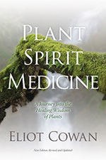 Plant Spirit Medicine Discussion Group