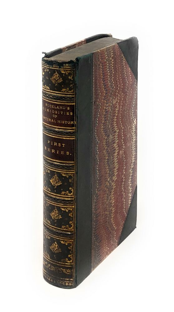 Curiosities of Natural History, First Series. Frank Buckland.