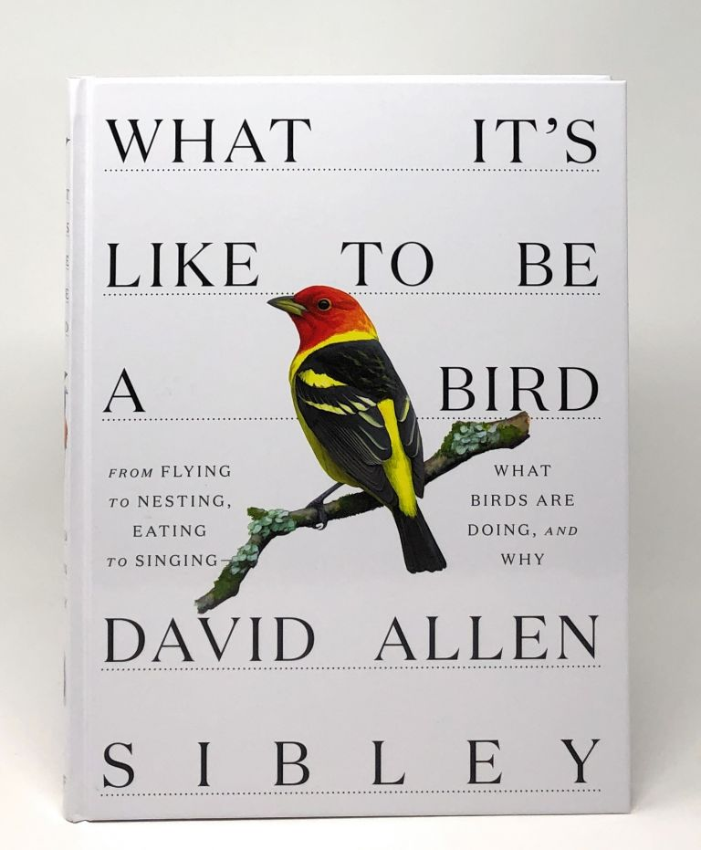 What It's Like to Be a Bird: From Flying to Nesting, Eating to Singing--What Birds Are Doing, and Why. David Allen Sibley.