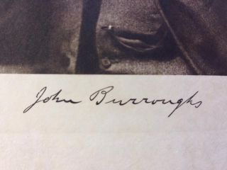 The Writings of John Burroughs, Volume XV: Leaf and Tendril