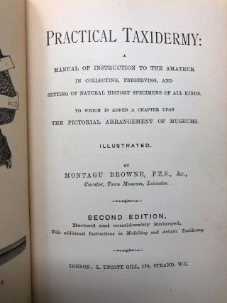 Practical Taxidermy: Manual of Instruction to the Amateur in Collecting, Preserving, and Setting Up Natural History Specimens of All Kinds to Which Is Added a Chapter Upon the Pictorial Arrangement of Museums