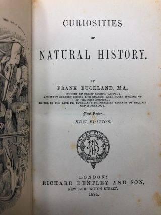 Curiosities of Natural History, First Series