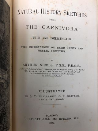 Natural History Sketches Among the Carnivora: Wild and Domesticated, with Observations on Their Habits and Mental Faculties